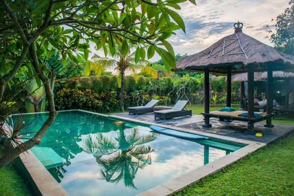 Surf Camp In Canggu Bali Endless Summer